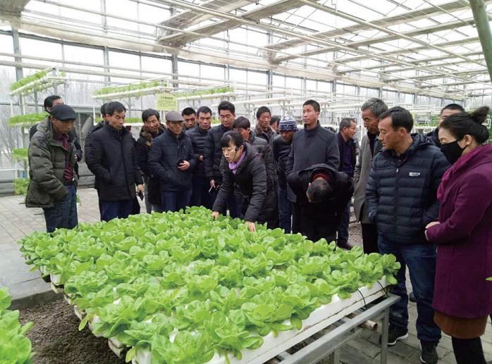 平安区2018至2019年度新型职业农民培训工作全面展开